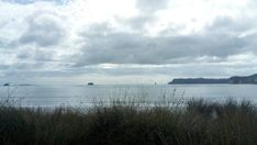 A calm and humid day in #whitianga  today