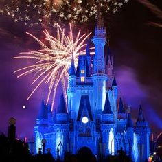 sadly i've never been here. one day i cannot wait to go there with my family and act like a little kid :)