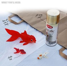 DIY golden fish supplies