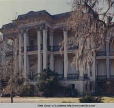 Nottoway plantation home near White Castle in Louisiana :: State Library of Louisiana Historic Photograph Collection
