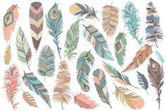 Tribal Feathers Vector PNG & JPG Set by Kenna Sato Designs on Creative Market