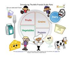 Teach children about foods from the dairy group using the new My Plate!