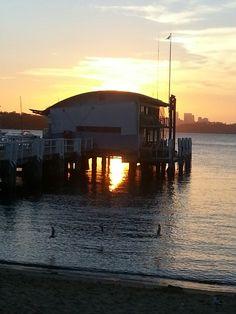 Warsons Bay, Sunset in Sydney x
