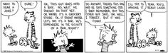 "Pinner says:  ""I'm beginning to think this is an INTP quirk!""  Repeating jokes is not my talent.  Leave it to Calvin & Hobbes to tell it like it is."