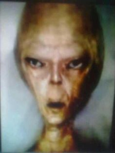 Megadump of UFO Images, Extraterrestrials, Antigravity Spaceships, Ancient Astronauts and Ancient Civilizations Sourced From The Deep Web Types Of Aliens, Aliens And Ufos, Ancient Aliens, Alien Pictures, Alien Proof, Ancient Astronaut Theory, Alien Artifacts, Secret Space Program, Alien Aesthetic