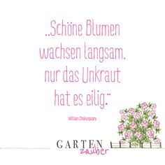 Flower Quotes, Hygge, Bujo, Characters, Letters, Words, Health, Gardening Quotes, Motivational Sayings