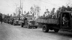 Convoy of Japanese prisoners, Rabaul.