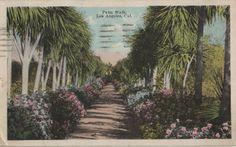 1921 L.A. Postcard. Hagins collection.