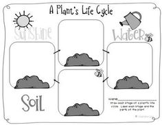 Life Cycle of Plants Unit, Investigations & Plant Life Cycle PowerPoint NGSS Fun organizer for illustrating the life cycle of a plant First Grade Science, Primary Science, Kindergarten Science, Science Classroom, Teaching Science, Science For Kids, Teaching Ideas, Science Worksheets, Science Resources