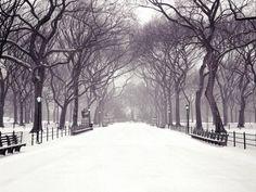 hecallsmeStatuary Walk, Central Park, New York City, New York – Christmas…