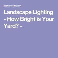 Landscape Lighting - How Bright is Your Yard? -