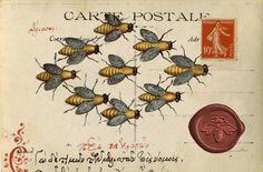 Buzzz carte postale.