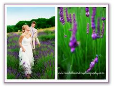 Country Chic Lavender Wedding www.michellevantinephotography.com