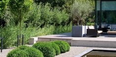 Minimalistische villatuin in Zoetermeer I Martin Veltkamp Tuinen
