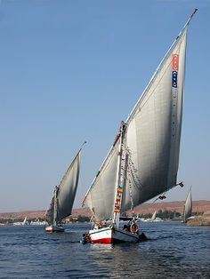 Feluccas on the Nile at Aswan, Egypt