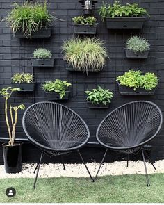 It's was tipped as a key trend for 2019 and still is for both inside and outside your home 🌿 . It's the perfect… Vertical Planting, Vertical Wall Planters, Vertical Gardens, Indoor Garden, Outdoor Gardens, Chilli Plant, Side Garden, Patio Plants, Wall Installation