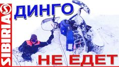 Динго НЕ ЕДЕТ. Динго Т150 по глубокому снегу с настом.