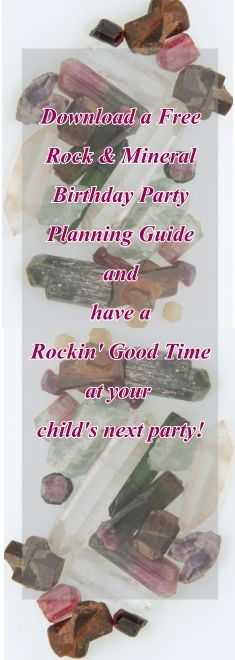 Are you thinking about throwing a geology party for your child's next birthday? Download a free party planning guide with idea to help make the day perfect. http://www.minimegeology.com/home/mgeo/page_532/rock_detectives_party_planning_guide.html