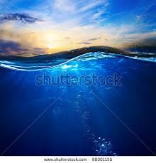 Google Image Result for http://image.shutterstock.com/display_pic_with_logo/324673/98001155/stock-photo-design-template-with-underwater-part...