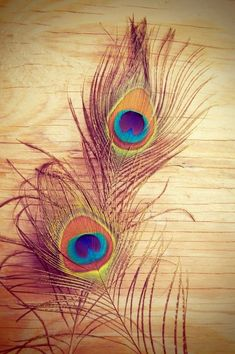 Peacock Art Print by Melissa Batchelder Photography - X-Small Feather Wallpaper, Art Prints, Peacock Feather Art, Krishna Art, Peacock Art
