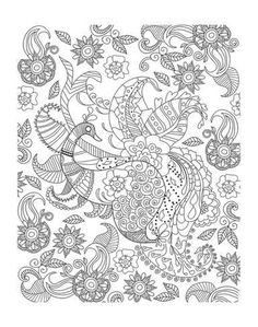 Coloring Poster Peacock And Flowers Art 56x44in