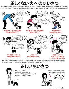 DOG TRAINING related illustrations