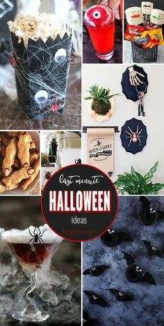 Whether you are looking for cute food options, creepy cocktails for a Halloween party, class treats, or fun Halloween decor, these last minute Halloween ideas are spooktacular. Get all the spooky details at TidyMom.net via @tidymom