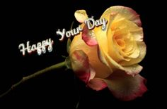 Happy your day Beautiful Roses, Day, Flowers, Plants, Flora, Plant, Royal Icing Flowers, Flower, Florals