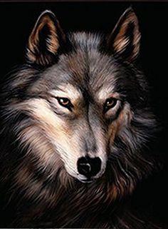 """Indian Chief Wolf Wild Animal Car Bumper Vinyl Sticker Decal 3.5/""""X6/"""""""