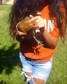 Chickens can be very cute