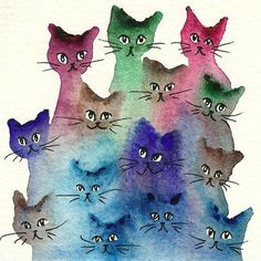 Belgium Stray Cats ..... Lori Alexander