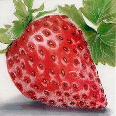 Amazing #Copic #coloring #tutorial for creating realistic looking fruit - this strawberry required only 5 copic markers