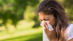 Allergy Relief in NYC - Dr. Louis Granirer Holistic Chiropractor