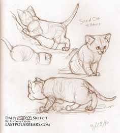 Daily_Animal_Sketch_052