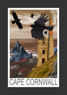 Choughs at Cape Cornwall, Cornwall (Art Print)