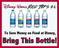 Dont Buy Water at Disney World! | Money Saving Tips For Disney (So you can buy more souvenirs instead!)
