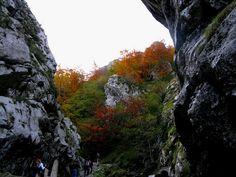 Desfiladeros de la ruta Foces de El Pino en el municipio de Aller #Asturias.