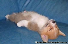 me..........after a particularly hard shift.