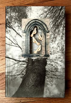 Altered book - using cut windows - journal theme birds and nature photograph