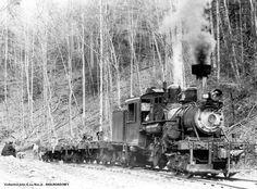 Sorry you missed the smart train. Work Train, Train Car, Ho Trains, Model Trains, Railroad Humor, Elk River, Logging Equipment, Abandoned Train, Choo Choo Train