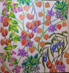 Millie Marotta Coloring Book Lovely Tropical Wonderland by Millie Marotta Animal Coloring Pages, Adult Coloring, Coloring Books, Enchanted Forest Coloring Book, Art Corner, Animal Books, Zen Art, Colorful Flowers, Drawings