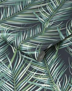 Want to be on trend? 🤔 Why not try a Maximalist wallpaper like our Super Fresco Easy Jungle Leaf Wallpaper? 🌿 - #iwwroom #interiordesigntips #interiordesignlife #interiordesignuk #interiordesigncontemporary #junglevibes #jungledecor #junglehome #junglehouse #jungledesign #tropicalhouse #tropicalhome #tropicaldecor Palm Leaf Wallpaper, Tropical Wallpaper, Green Leaves, Plant Leaves, Jungle House, Jungle Vibes, Inspirational Wallpapers, Tropical Decor, Leaf Prints
