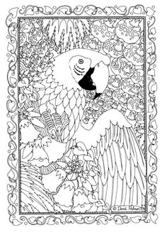 """By Dandi Palmer, Dodo Books, """"Pictures to Colour in (Book One) coloring book."""