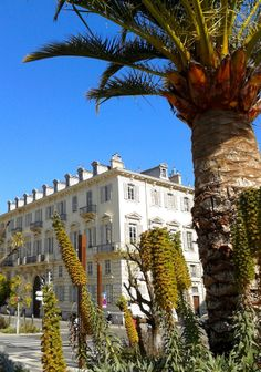 http://www.experiencethefrenchriviera.com #FrenchRiviera http://www.facebook.com/experiencethefrenchriviera