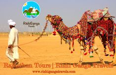 #best_travel_agency_in_Rishikesh #Top_Tour_and_Travel_Agency_in_Rishikesh #Rajasthan_Tours covering all the #best_destinations_of_Rajasthan. http://rishigangatravels.com/