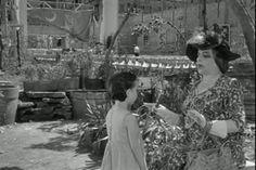 """Questa scena di """"Bellissima"""" (Luchino Visconti, 1951) è ambientata al Pigneto. Sorto tra la fine dell'800 e i primi trenta anni del 900, il quartiere deve il suo nome ai numerosi pini piantati da una famiglia nobile residente nella zona."""