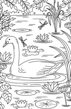 20 Adult Coloring pages #ricldp #swan