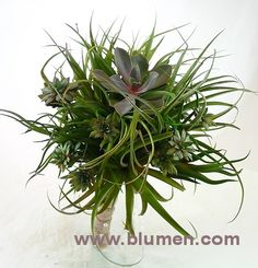 Tillandsia and succulent wedding bouquet wrapped in burlap; Blumengarten florist, Pittsburgh, PA; www.blumen.com