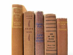Beige Brown Vintage Books / Book Decor / Book by redladybugz