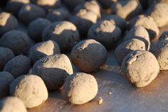 Seed Balls -- a good winter project (masanobu fukuoka forum at permies) No Till Garden, Lawn And Garden, Garden Seeds, Planting Seeds, Herb Spiral, North Garden, Seed Bombs, Winter Project, No Rain